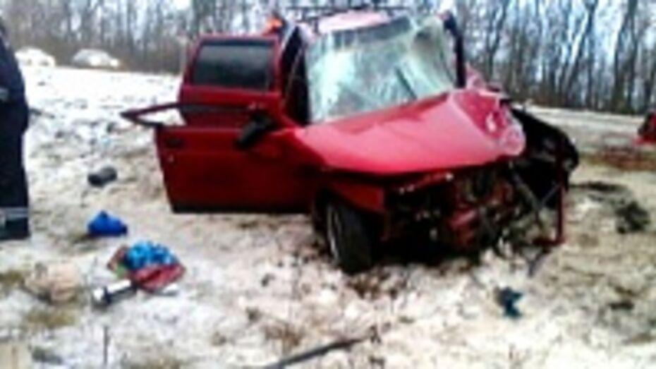 В Воронежской области 20 февраля произошло 180 ДТП