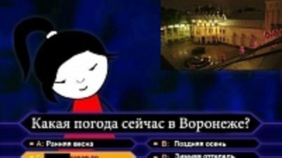 Воронежцы дождутся снега к Старому Новому году