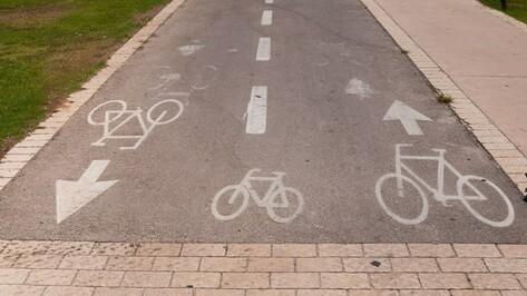 Власти Воронежа потратят 10 млн рублей на ремонт велодорожек