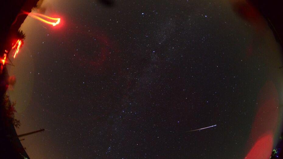 Под Воронежем любители астрономии сфотографировали звездопад Персеиды