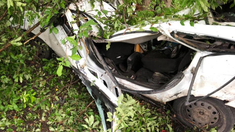 «Ладу Приору» размазало о дерево под Воронежем: 2 человека погибли