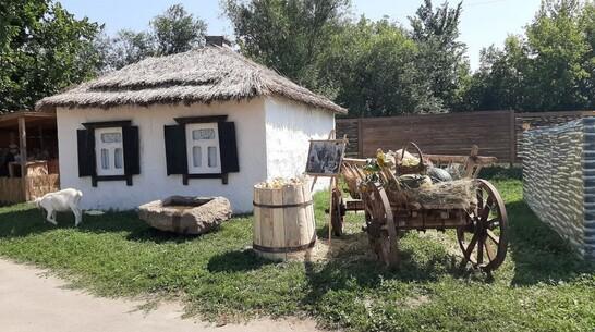 Воробьевские первоклассники создали виртуальный фотоальбом «Моя малая родина»