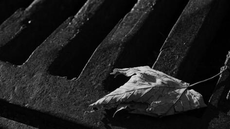 Установили причину гибели 2 рабочих в сливной яме на ферме в Воронежской области