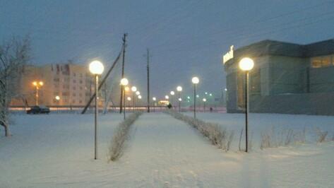 Спасатели предупредили воронежцев о метели и снежных заносах на дорогах