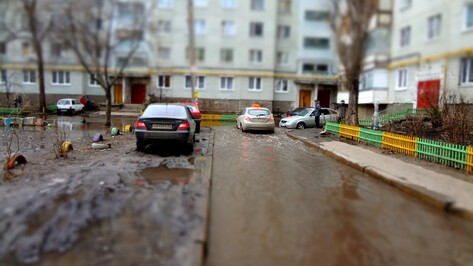 Только за 1 апреля в Воронеже затопило 36 участков