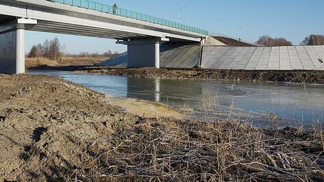 Власти начали искать подрядчика для расчистки реки Савала в Воронежской области