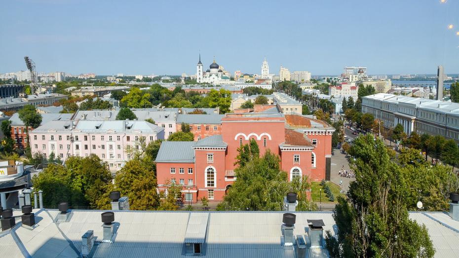Воронеж стал «Городом деревьев мира»