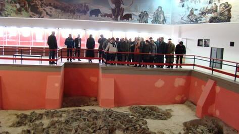 В международной акции «Ночь музеев» в Костенках приняли участие около 1,5 тыс человек