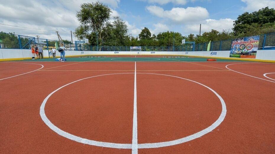 Власти Воронежской области потратят до 6,4 млн рублей на возведение спортплощадок у школы
