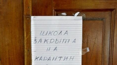 В Воронеже школу №16 закрыли на карантин из-за ОРВИ и гриппа