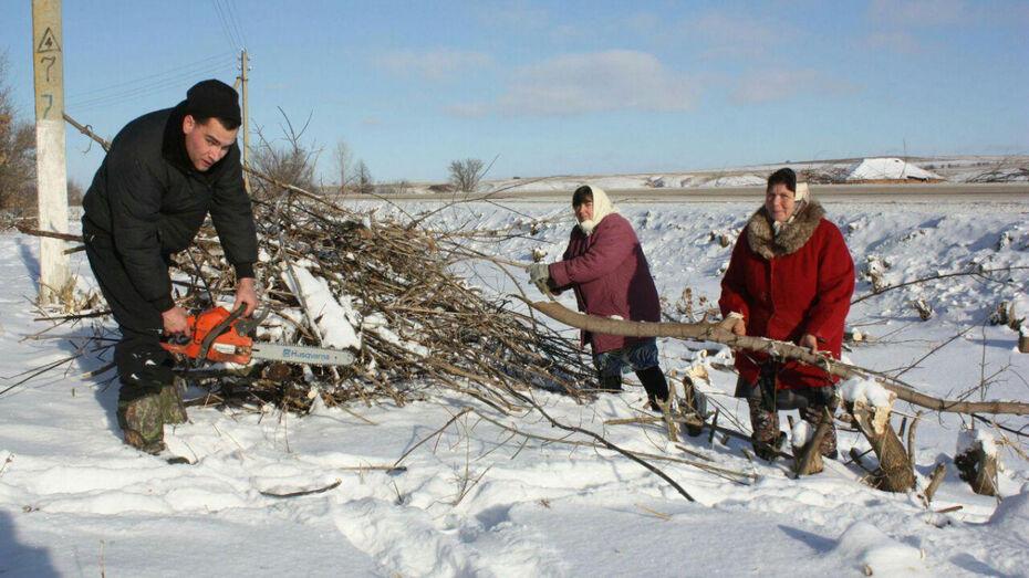 В селах Воронежской области появятся старосты