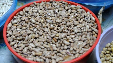 Без пестицидов и ГМО. Почему Воронежская область заинтересовалась органик-производством