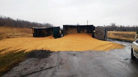В Таловском районе перевернулся «КамАЗ» с зерном