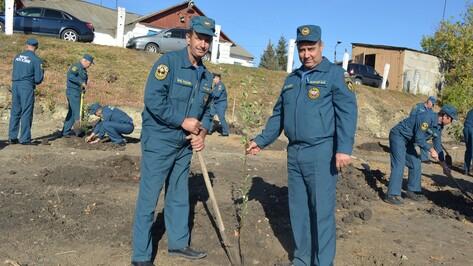 Воробьевские пожарные посадили фруктовый сад на въезде в село