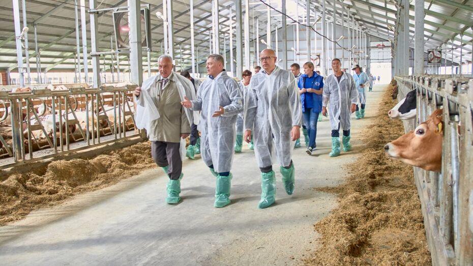 «Молвест» показал израильской делегации молочную ферму в Воронежской области
