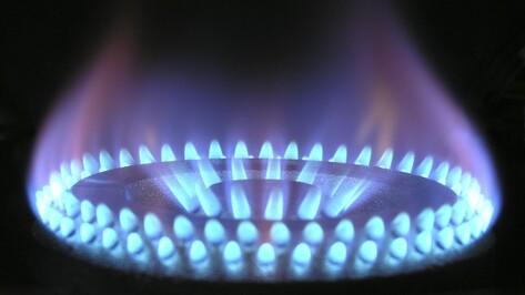 Государственная дума приняла закон о бесплатной газификации домов в РФ