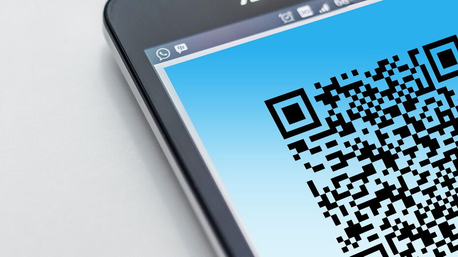 Систему допуска на мероприятия по QR-кодам проработают в Воронежской области