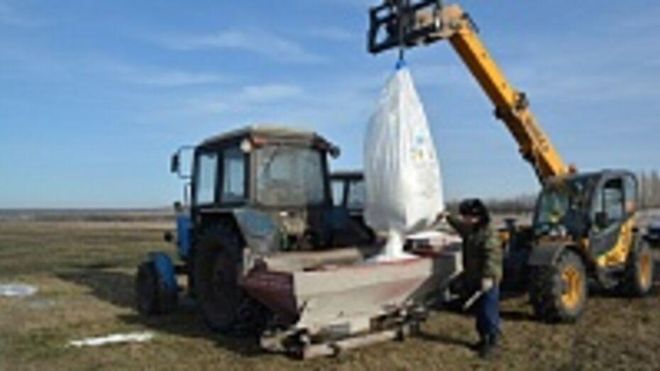 В Калачеевском районе уже в феврале начались полевые работы