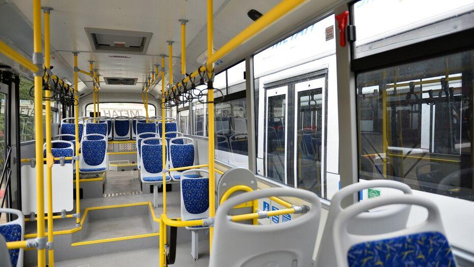 Власти Воронежа разработают проект электронного проездного до конца года