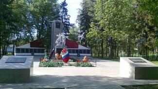 Каменские Марки победили в этапе областного конкурса «Самое красивое село»