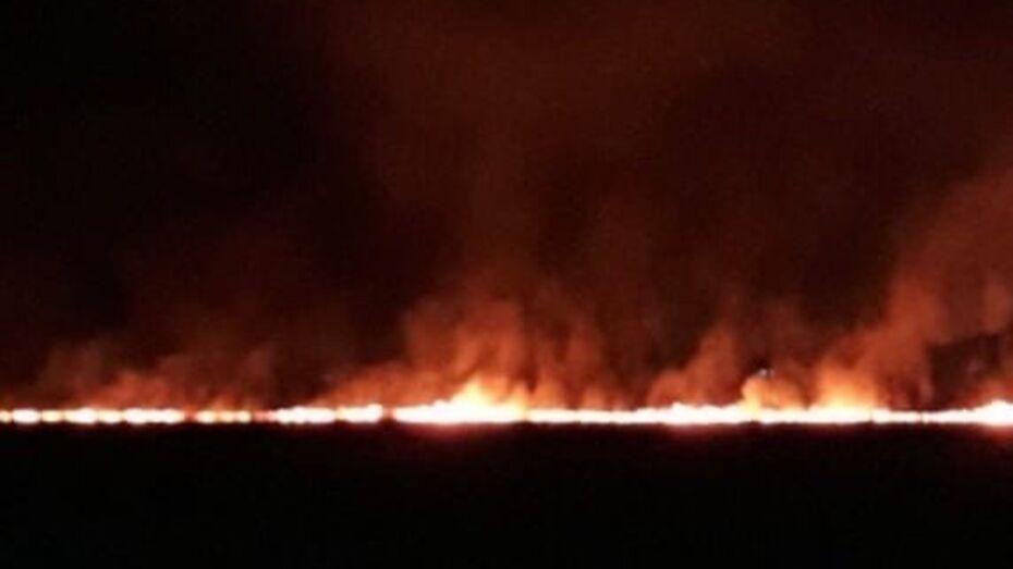 Под Воронежем сгорело 3 га сухой травы