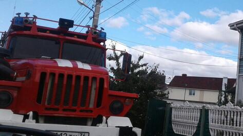 МОЛНИЯ: В Воронеже мужчина застрелил сына и его жену