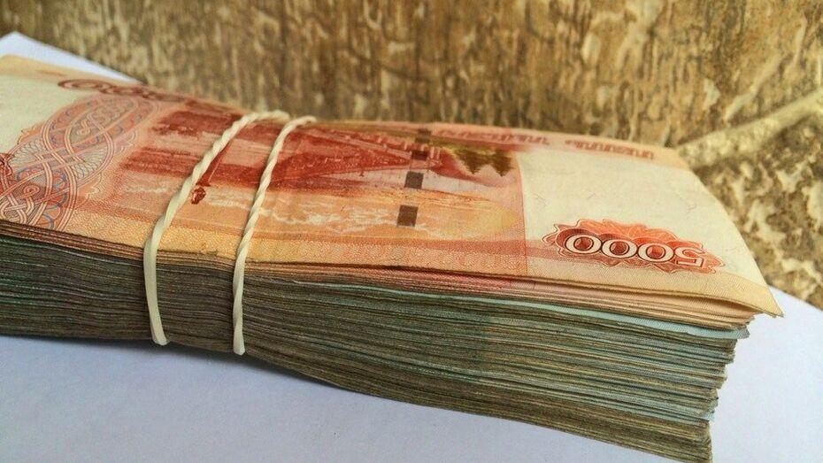 Трое воронежцев организовали бизнес с теневым доходом в 260 млн рублей
