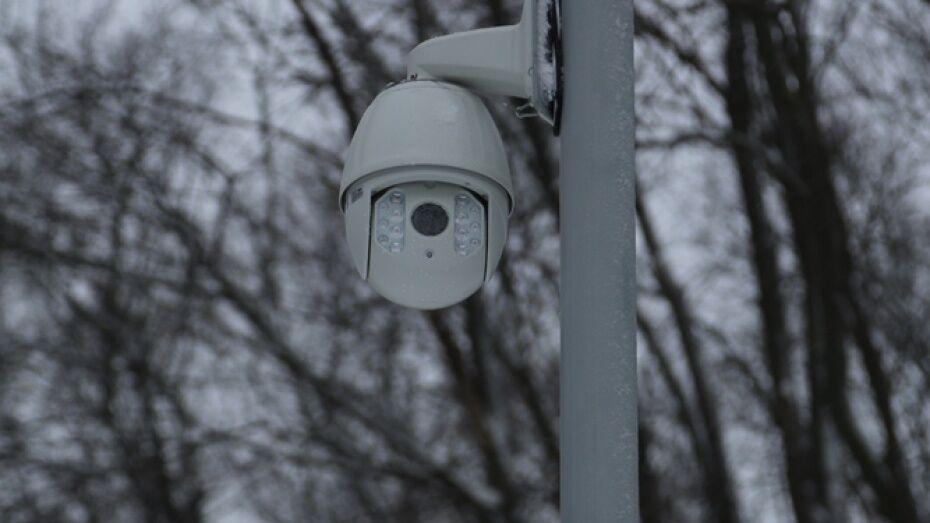 В воронежских парках и скверах установят 100 камер видеонаблюдения