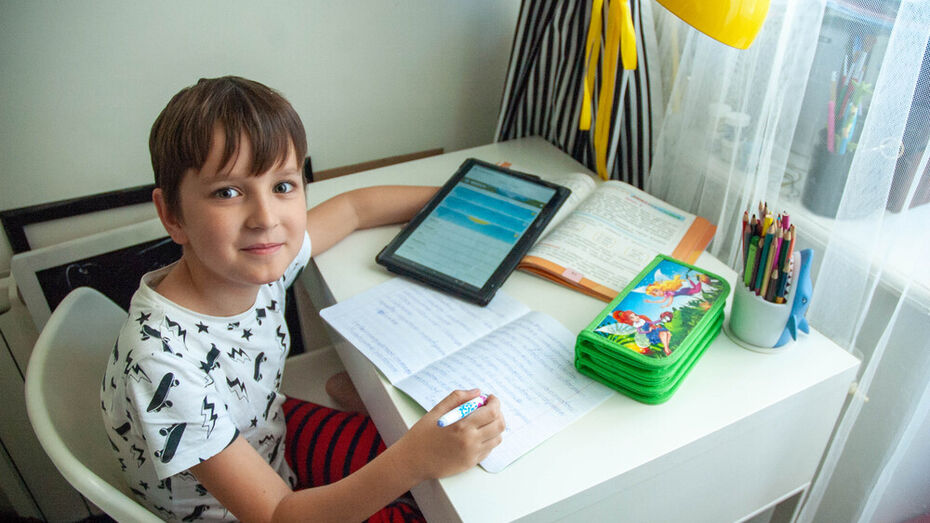 Во всех школах России появится скоростной интернет в 2021 году