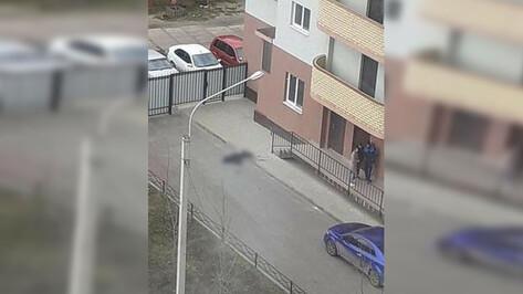 У подъезда многоэтажки в Воронеже нашли тело женщины