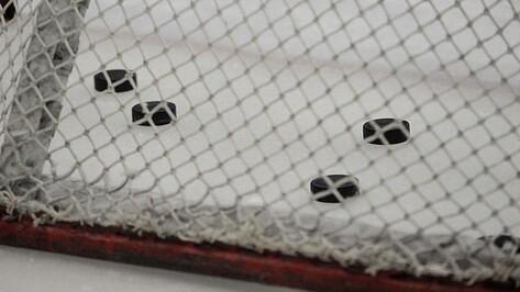Воронежские и липецкие журналисты сыграют в хоккей с правительством РФ