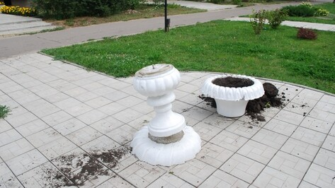 На центральной улице Россоши неизвестные разгромили цветочные вазоны