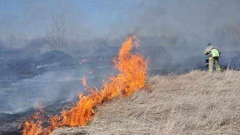 В Бутурлиновском районе за 4 дня произошло 36 ландшафтных пожаров