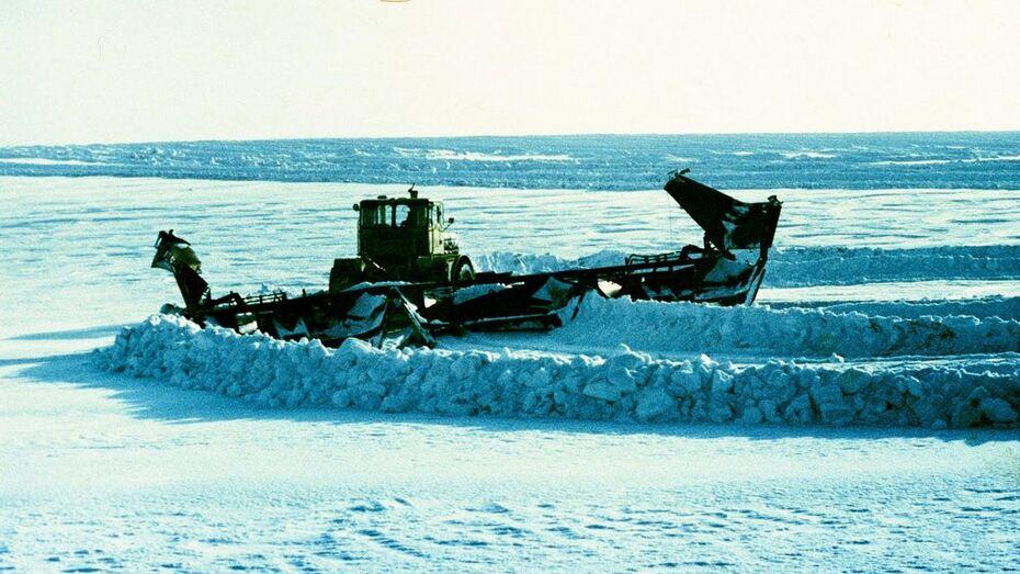 Хозяйства Аннинского района начали работы по снегозадержанию