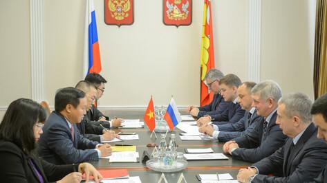 Воронежская область посотрудничает с Вьетнамом в экономике и туризме