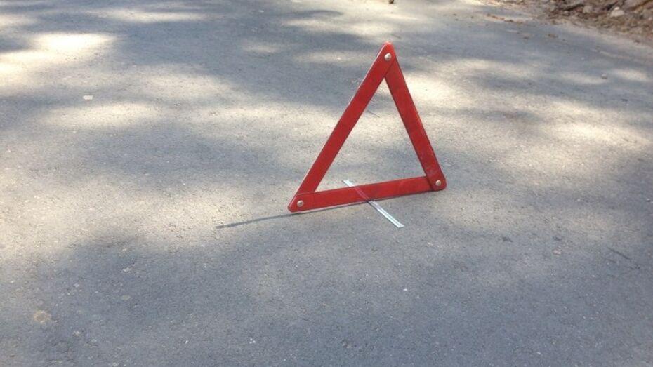 В Воронежской области фура насмерть сбила белгородца