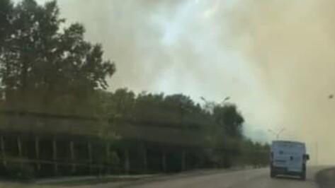 В Воронеже разгорелись 2 ландшафтных пожара