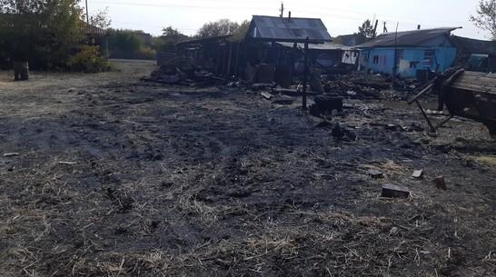 В Поворинском районе огонь уничтожил сарай и 5 т сена