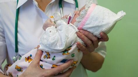 В Воронежской области ввели выплату при рождении второго ребенка