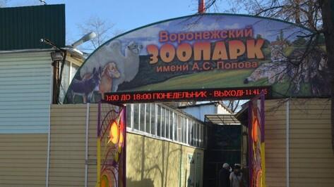 Воронежский зоопарк отменит плату за вход в День экологических знаний