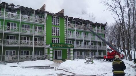Спасатели назвали вероятные причины пожара на базе отдыха «Немецкая слобода» под Воронежем
