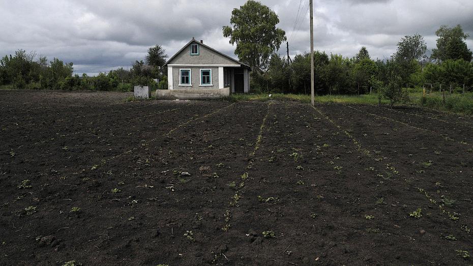 Программа сельской ипотеки оказалась непопулярной у воронежцев