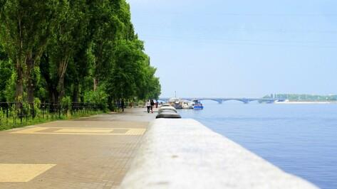 Аномальная жара в Воронежской области ослабнет уже завтра