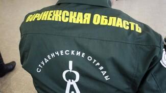 Воронежские студотряды предложили помощь в восстановлении психинтерната в Алферовке