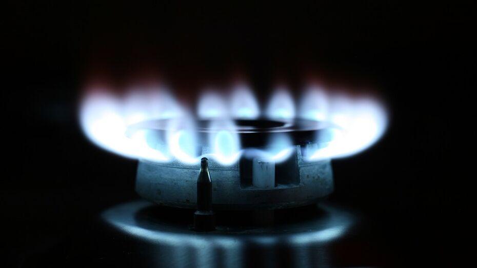 Губернатор и спикер облдумы поздравили воронежских работников нефтегазовой отрасли