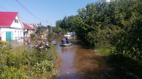 По 100 тыс рублей заплатят жильцам затопленных домов на левом берегу Воронежа