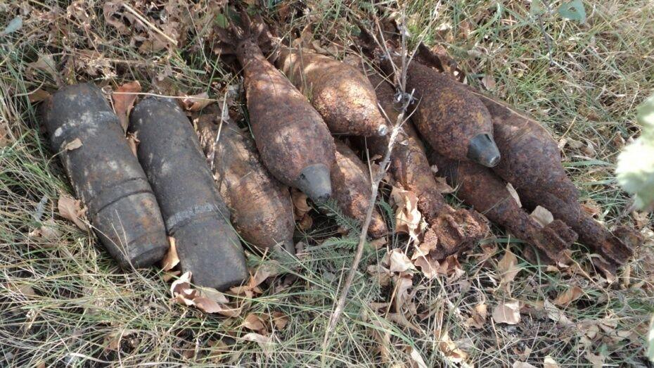 В Воронежской области уничтожили 122 боеприпаса времен войны