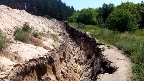Экс-губернатор Воронежской области Алексей Гордеев проследит за ситуацией с озером Круглое