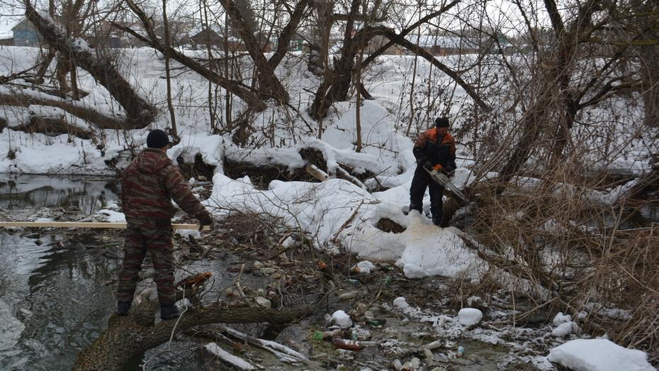 В Калаче на реках Подгорная и Толучеевка уберут завалы из деревьев
