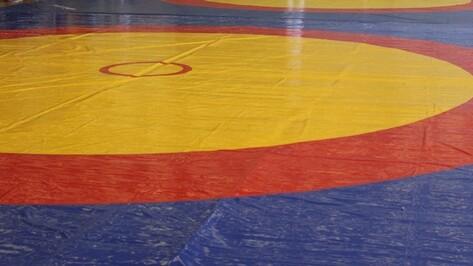 Таловчане завоевали семь медалей на областных соревнованиях по самбо